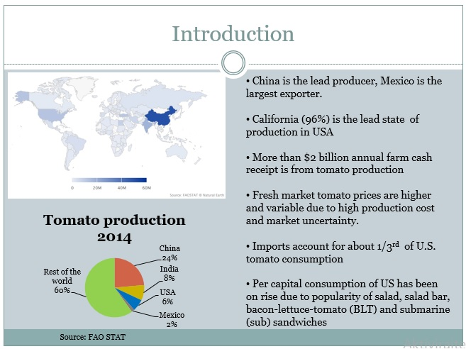 Biotechnology: Tomato Production (14 slides)