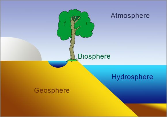 Biosphere Of Earth Definition Essay - image 3